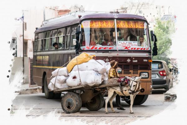 Eselwagen vs. Bus
