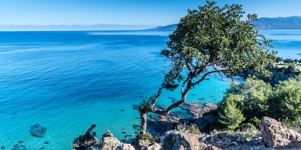 Panoramabild - Akamas auf Zypern