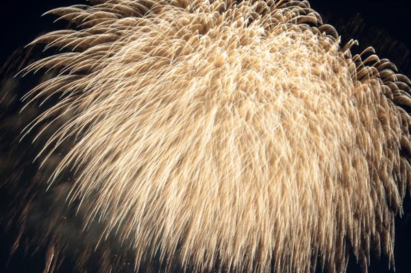 Japanisches Feuerwerk in Düsseldorf-126