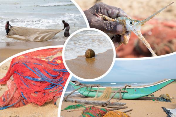 Collage Fischerei auf Sri Lanka