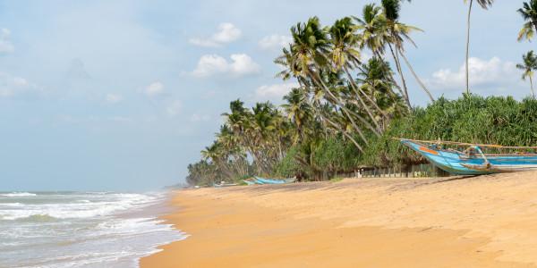 Panoramabild - Strand in Kalutara auf Sri Lanka