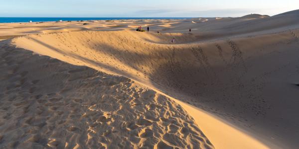 Panoramabild - Sanddüne in Maspalomas auf Gran Canaria