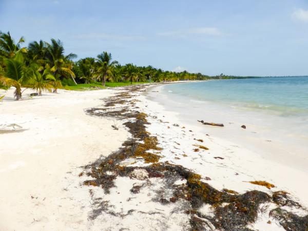 Strand im Sian Kaan