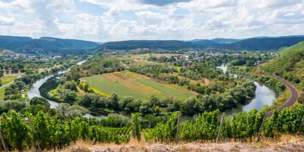 Panoramabild - Saarschleife bei Konz
